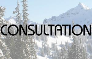 Consultation.v2